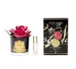 Cote Noir Lux Perfumed Rose in Vase 140mm